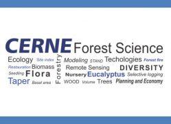 Cerne: crescimento no fator de impacto faz de revista científica da UFLA a melhor do Brasil em Ciências Florestais